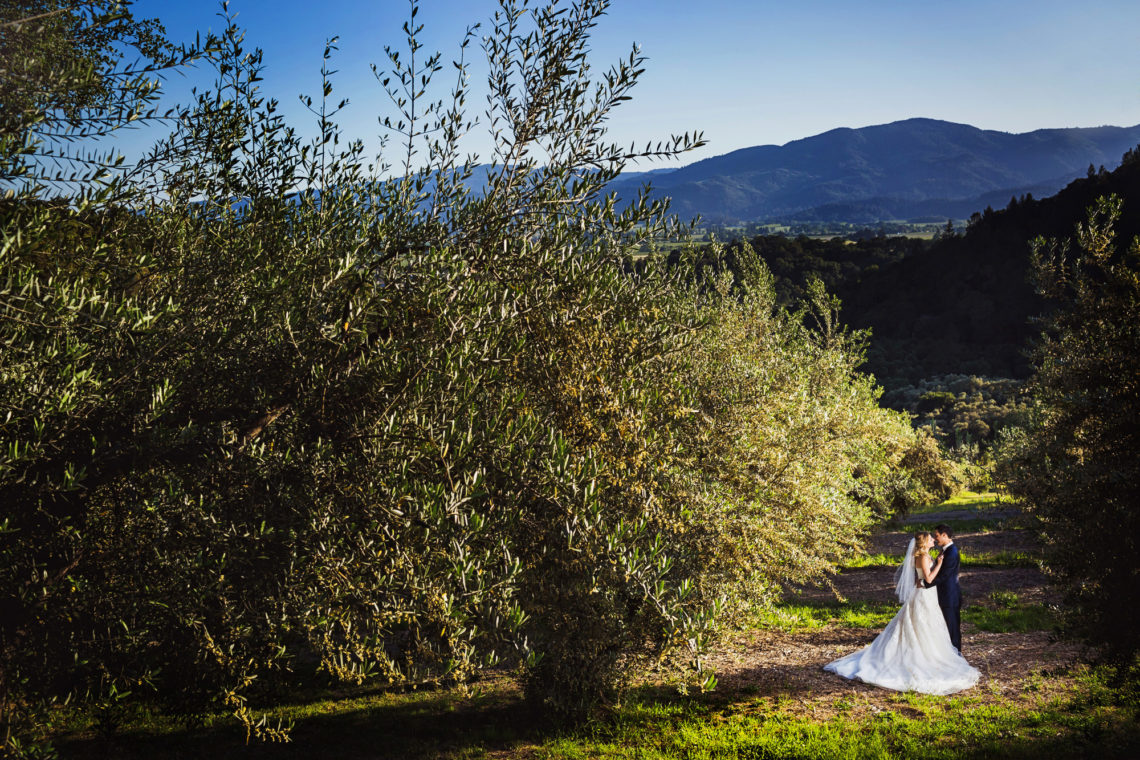 jelena-vahe-0291-auberge-du-soleil-rutherford-napa-california-wedding-photographer-deborah-coleman-photography