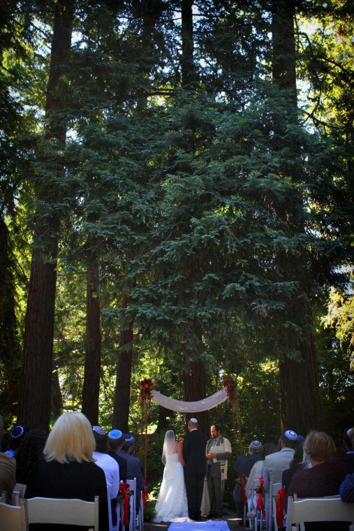 alissa-dan-012-piedmont-community-hall-piedmont-oakland-wedding-photographer-deborah-coleman-photography