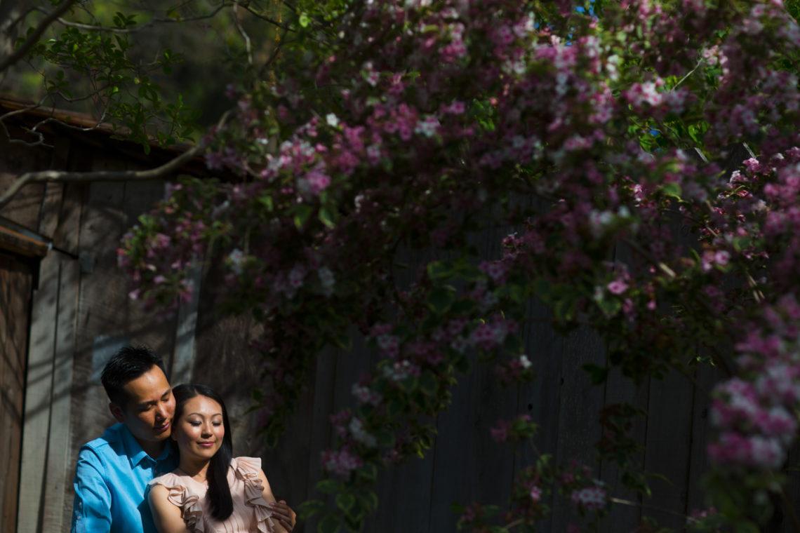 deanna-andrew-004-allied-arts-menlo-park-wedding-photographer-deborah-coleman-photography-AlliedArtsMenloParkEngagementDeannaChanAndrewLim04