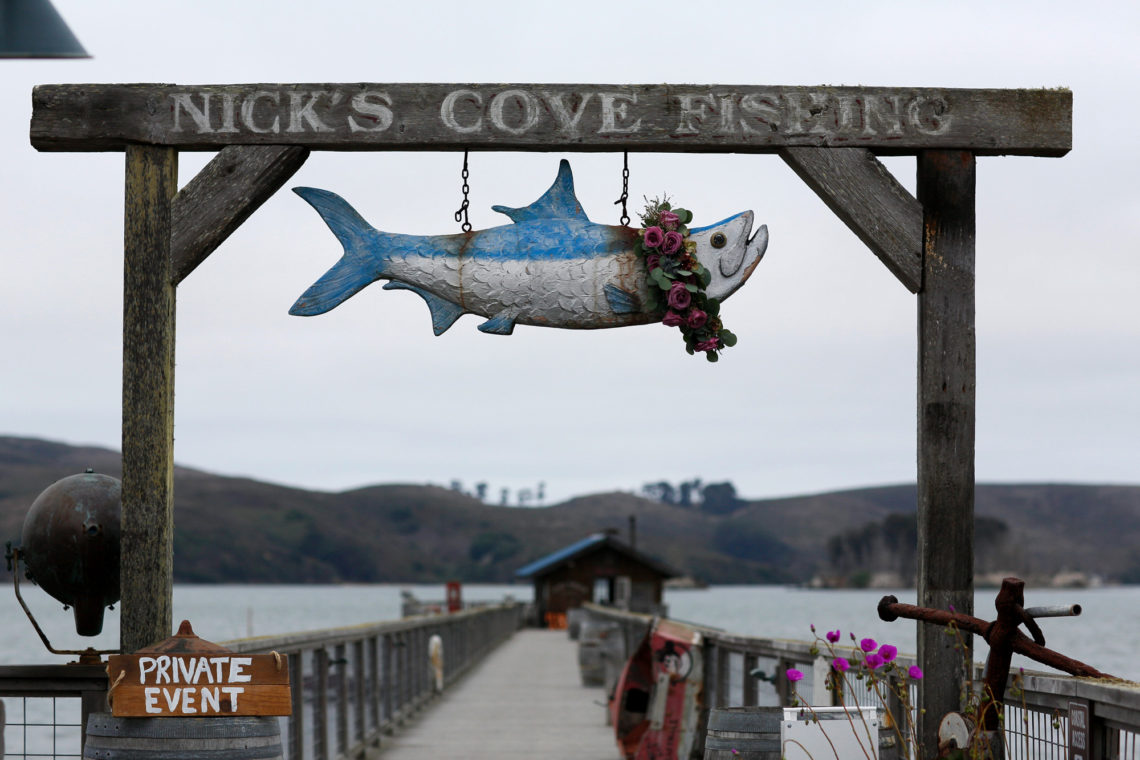 tamsen-robert-018-nicks-cove-point-reyes-california-wedding-photographer-deborah-coleman-photography