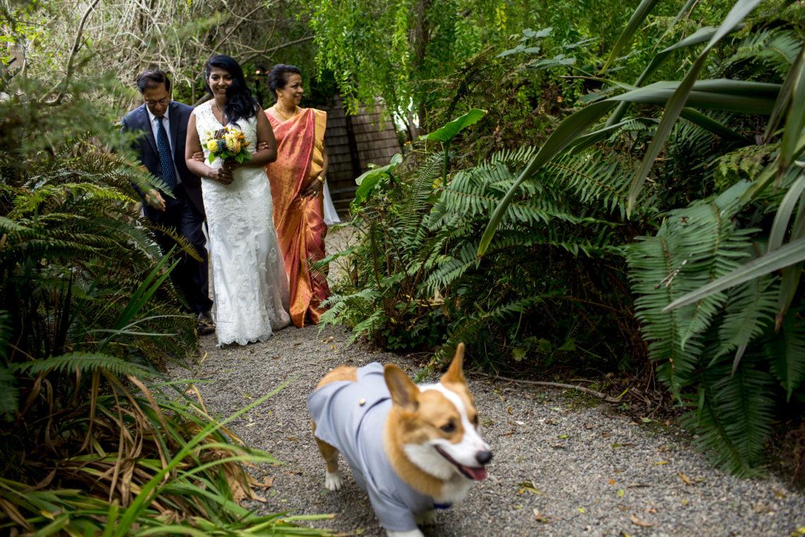 michelle-eric-155-compass-rose-gardens-bodega-bay-wedding-photographer-deborah-coleman-photography