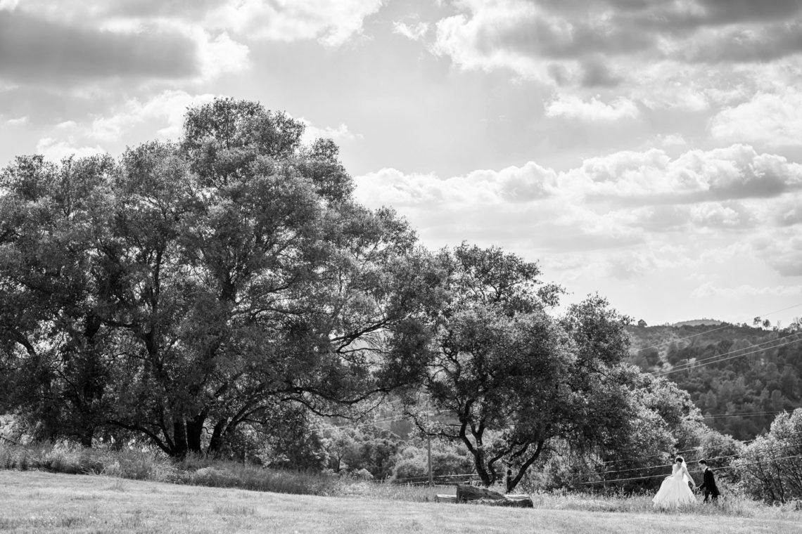lauren-blaire-170-big-table-ranch-yosemite-coulterville-wedding-photographer-deborah-coleman-photography